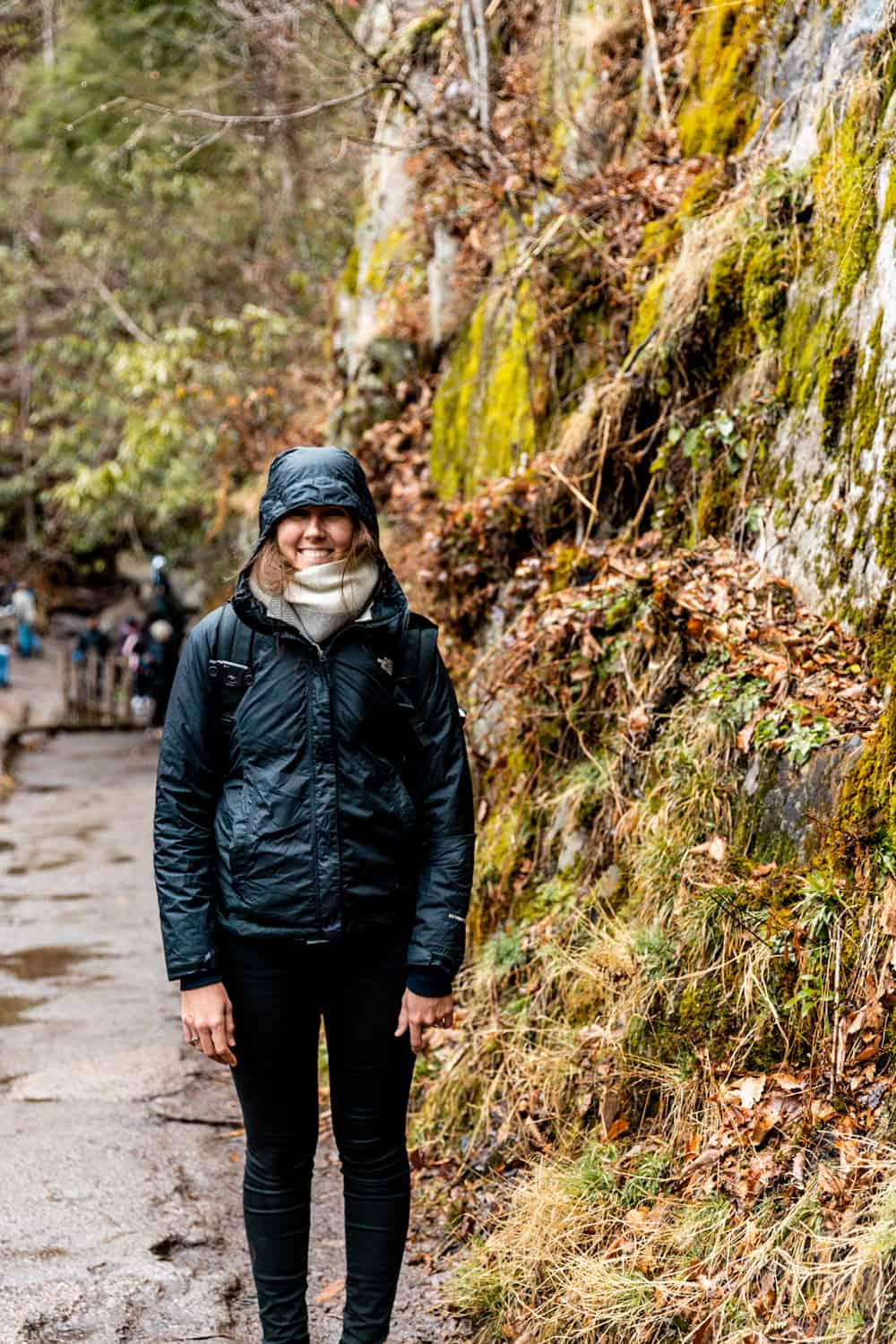 best hiks in smoky mountain national park