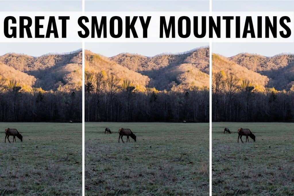 great smoky mountains things to do